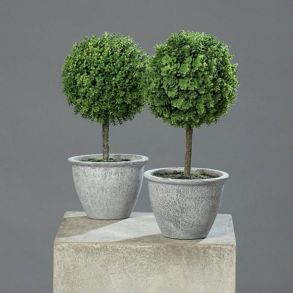 home affaire kunstpflanze sedum kugelbaum 2er set. Black Bedroom Furniture Sets. Home Design Ideas
