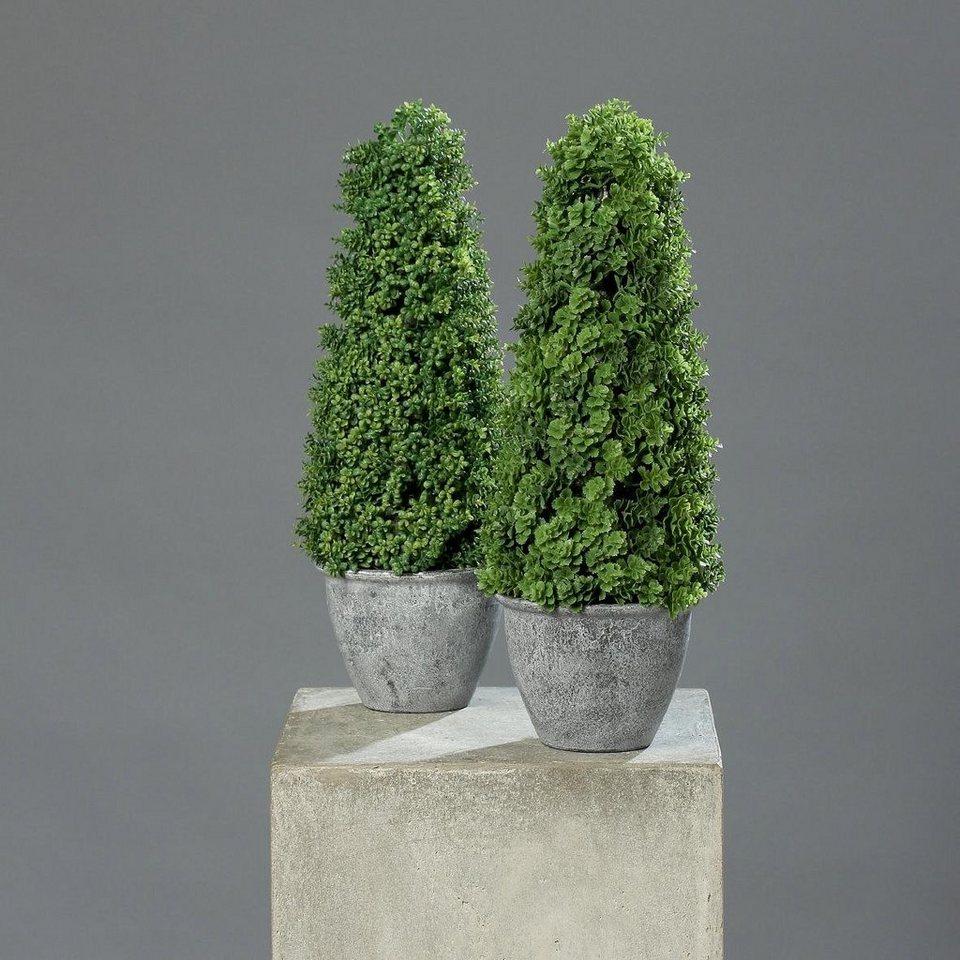 Home affaire Kunstpflanze »Sedum-Kegel« (2er Set) in grün
