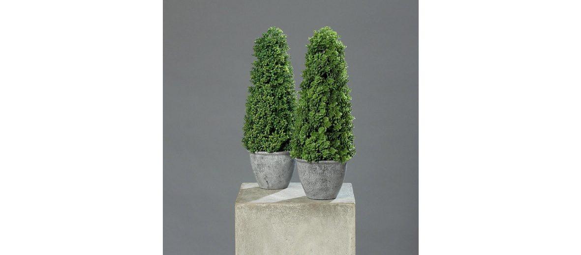 Home affaire Kunstpflanze »Sedum-Kegel« (2er Set)