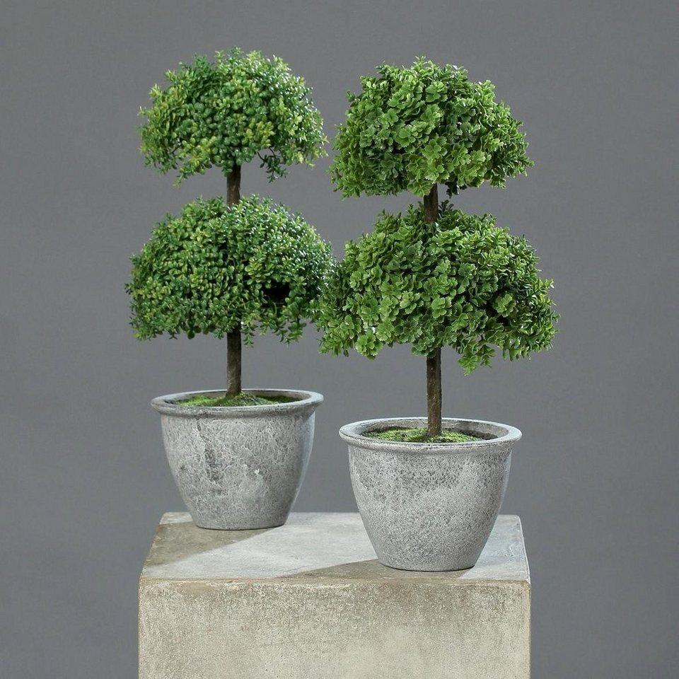 Home affaire Kunstpflanze »Sedum-Arrangement« (2er Set) in grün