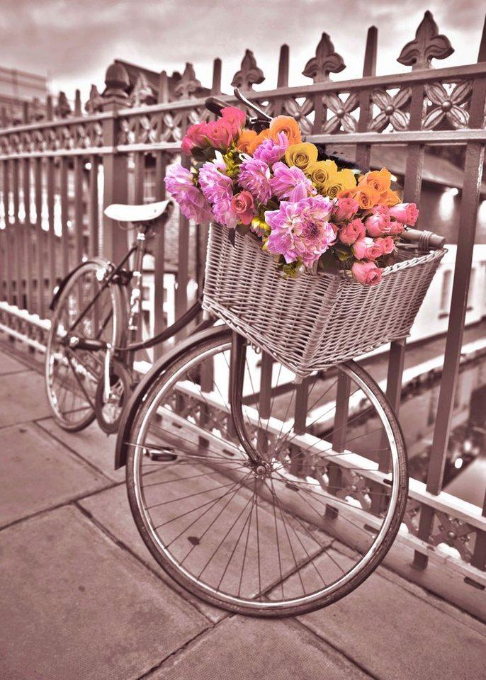 Leinwandbild »Fahrrad« in lila