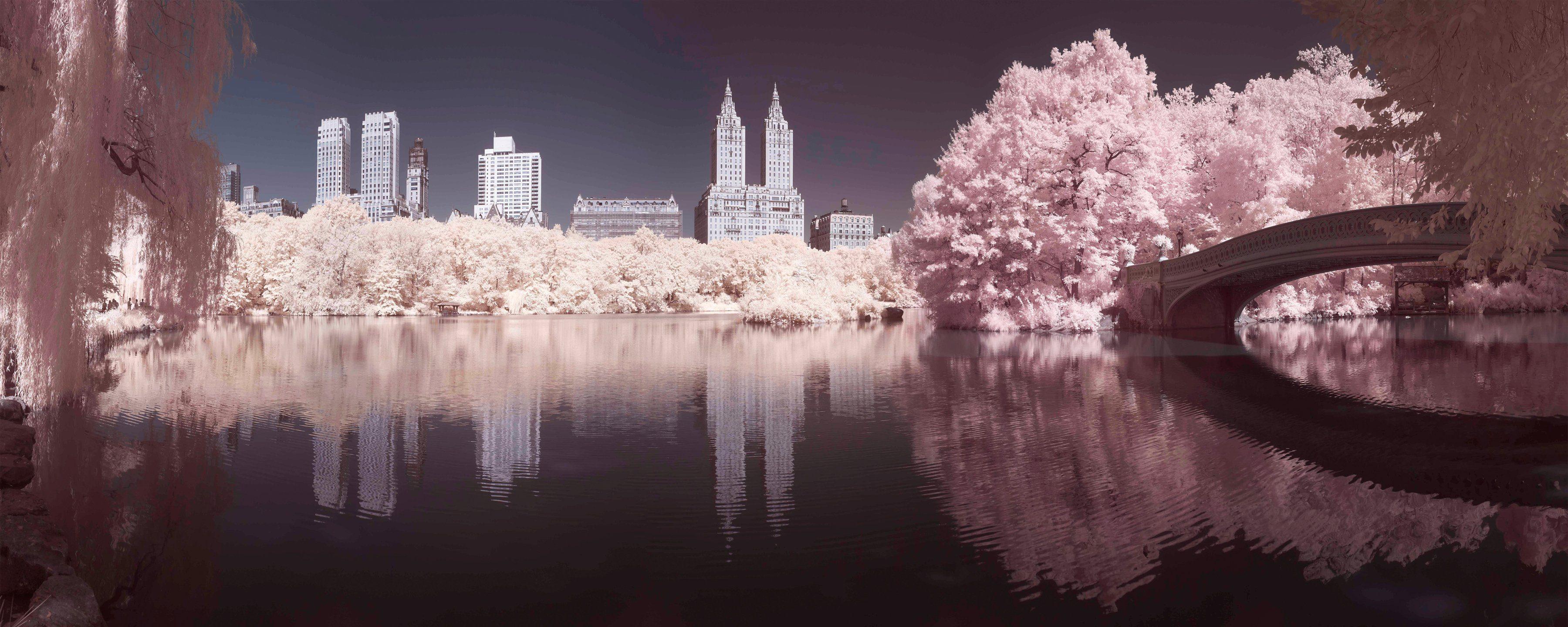 Leinwandbild »Central Park«