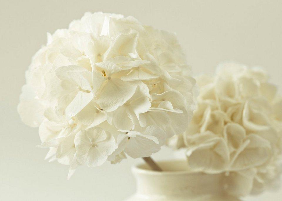 Leinwandbild »Hortensien« in weiß