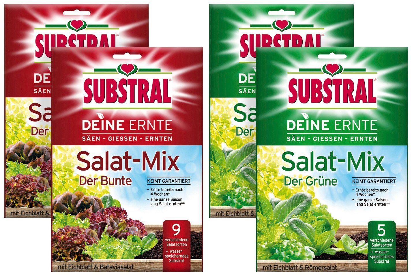 Sämereien »Deine Ernte Salat-Mix «