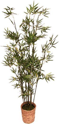 Kunstpflanze »Bambus«, höhe 150 Zentimeter