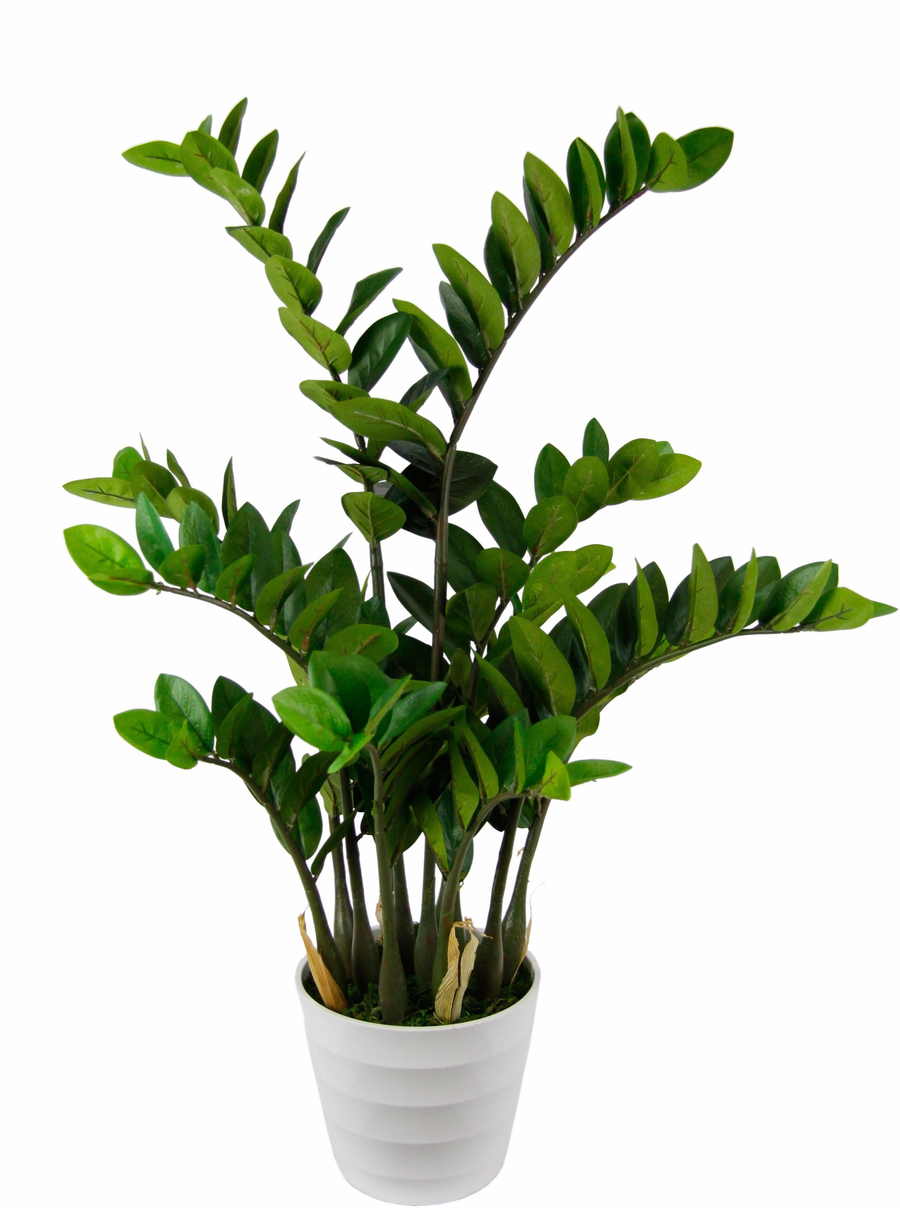 Kunstpflanze »Tropenwurz«
