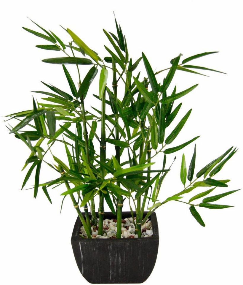 kunstpflanze bambus in schale online kaufen otto. Black Bedroom Furniture Sets. Home Design Ideas