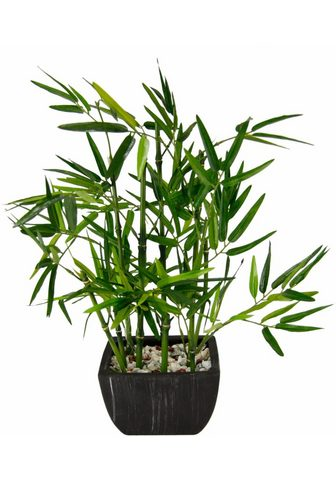 Dirbtinis augalas »Bambus«