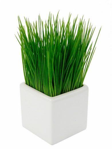 Kunstpflanze »Gras« Gras, I.GE.A., Höhe 22 cm