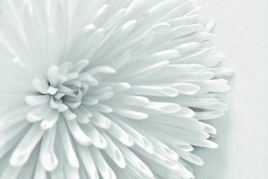 INOSIGN Deco-Panel »White Flower Heart«, 90/60 cm