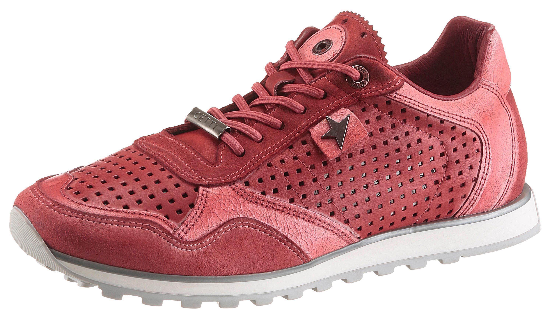 Cetti Sneaker, im trendigen Used Look kaufen  rot-used-finish