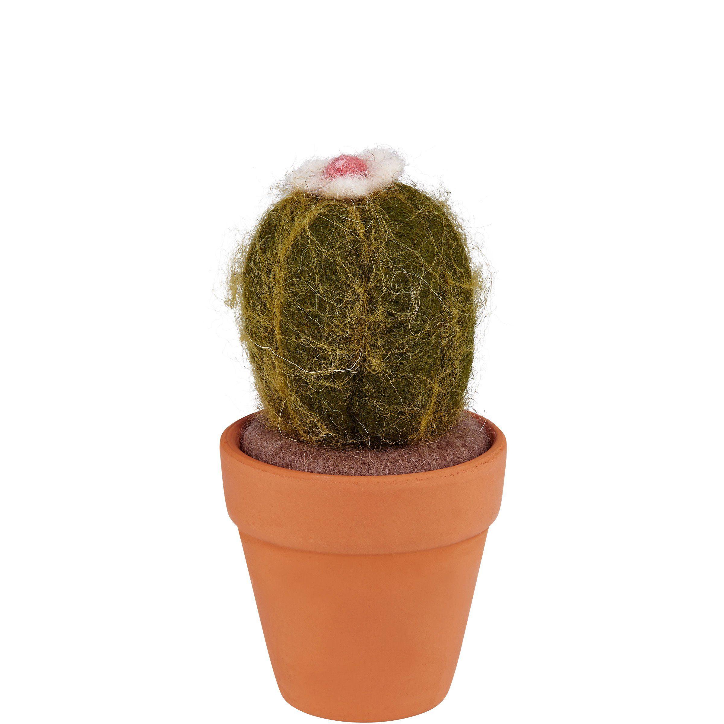 BUTLERS MEXICO »Kaktus rund«