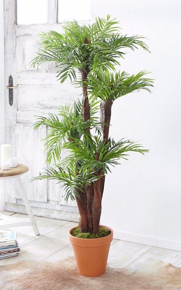 Home affaire Kunstpflanzen »Areca Palme« in grün