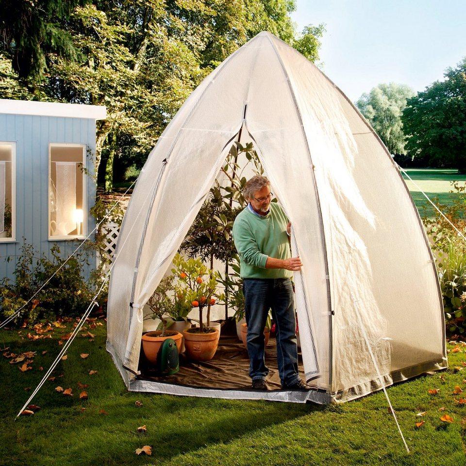 folien gew chshaus tropical island xl b t h 340 340. Black Bedroom Furniture Sets. Home Design Ideas