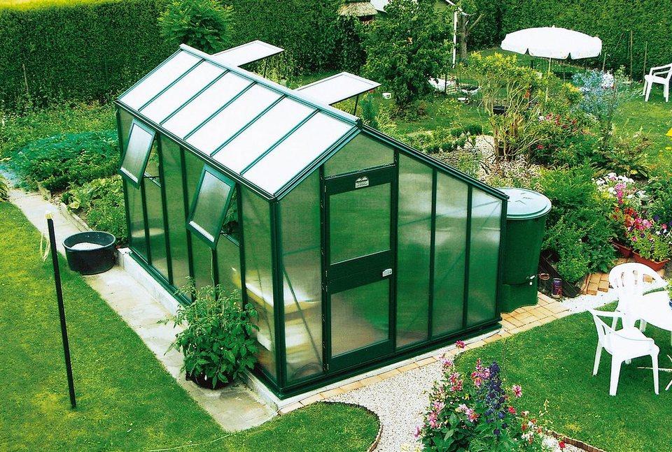 beckmann gew chshaus allg u s100 ge bxt 256x381 cm. Black Bedroom Furniture Sets. Home Design Ideas