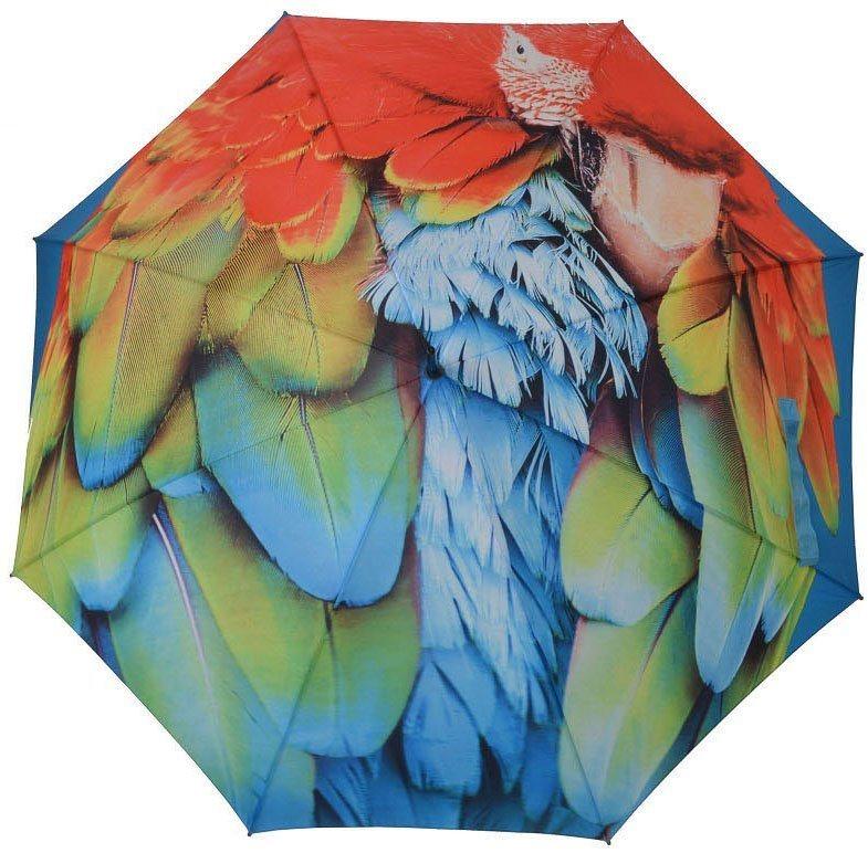 Regenschirme - doppler® Stockregenschirm »Modern Art, Ara« ›  - Onlineshop OTTO