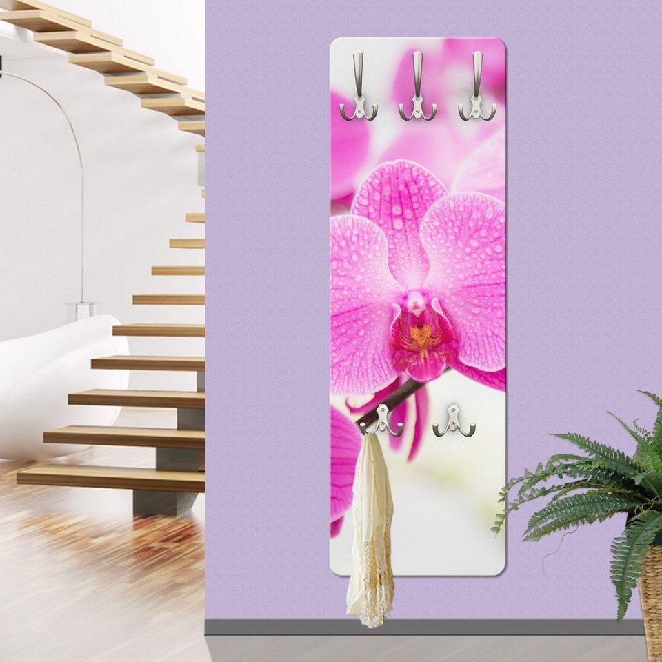 Bilderwelten wandgarderobe nahaufnahme orchidee otto for Garderobenpaneel edelstahl