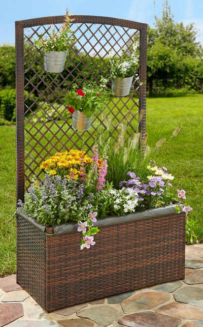 Spalier online kaufen » Blumenspalier | OTTO