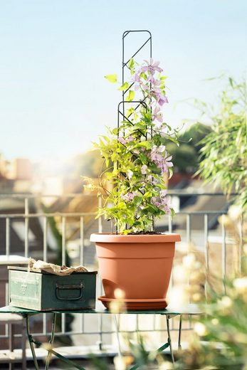 EMSA Set: Blumenkasten »MY CITY GARDEN«, inkl. Untersetzer & Rankgitter