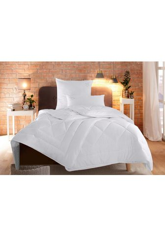 RIBECO Antklodė + Mikropluošto pagalvė »Jan« ...