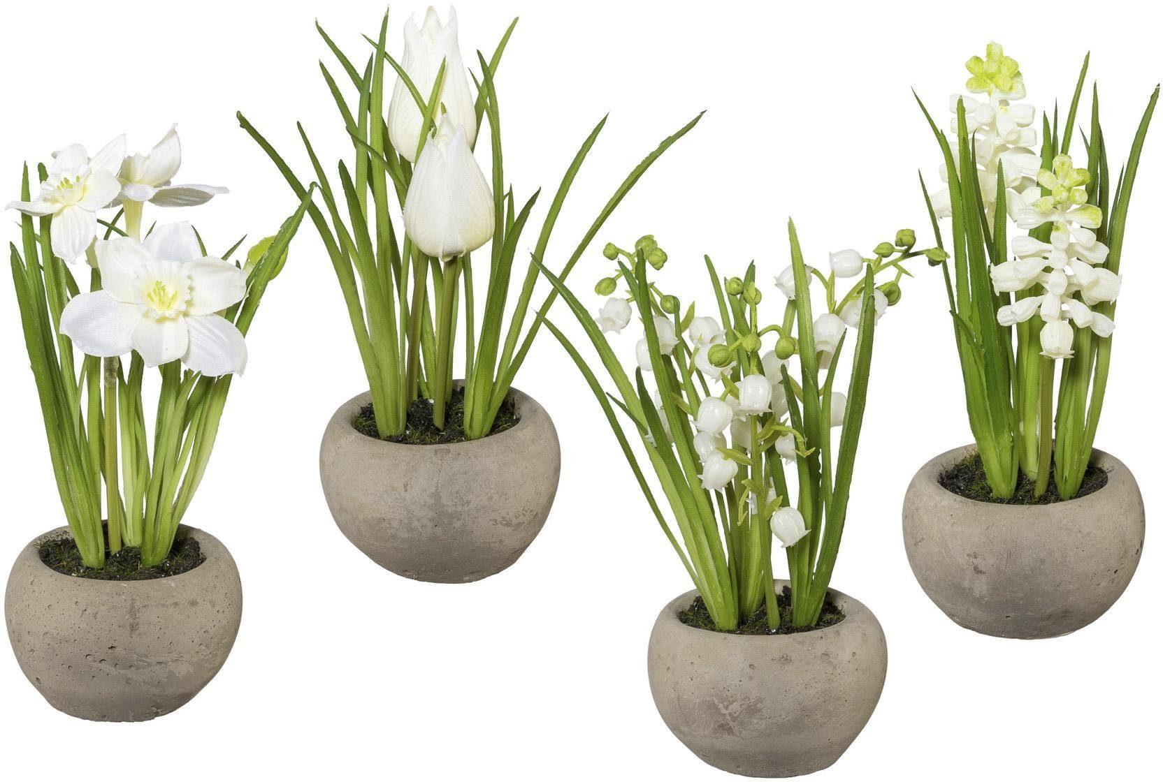 Frühlingsblumen im Zementtopf (4er Set)