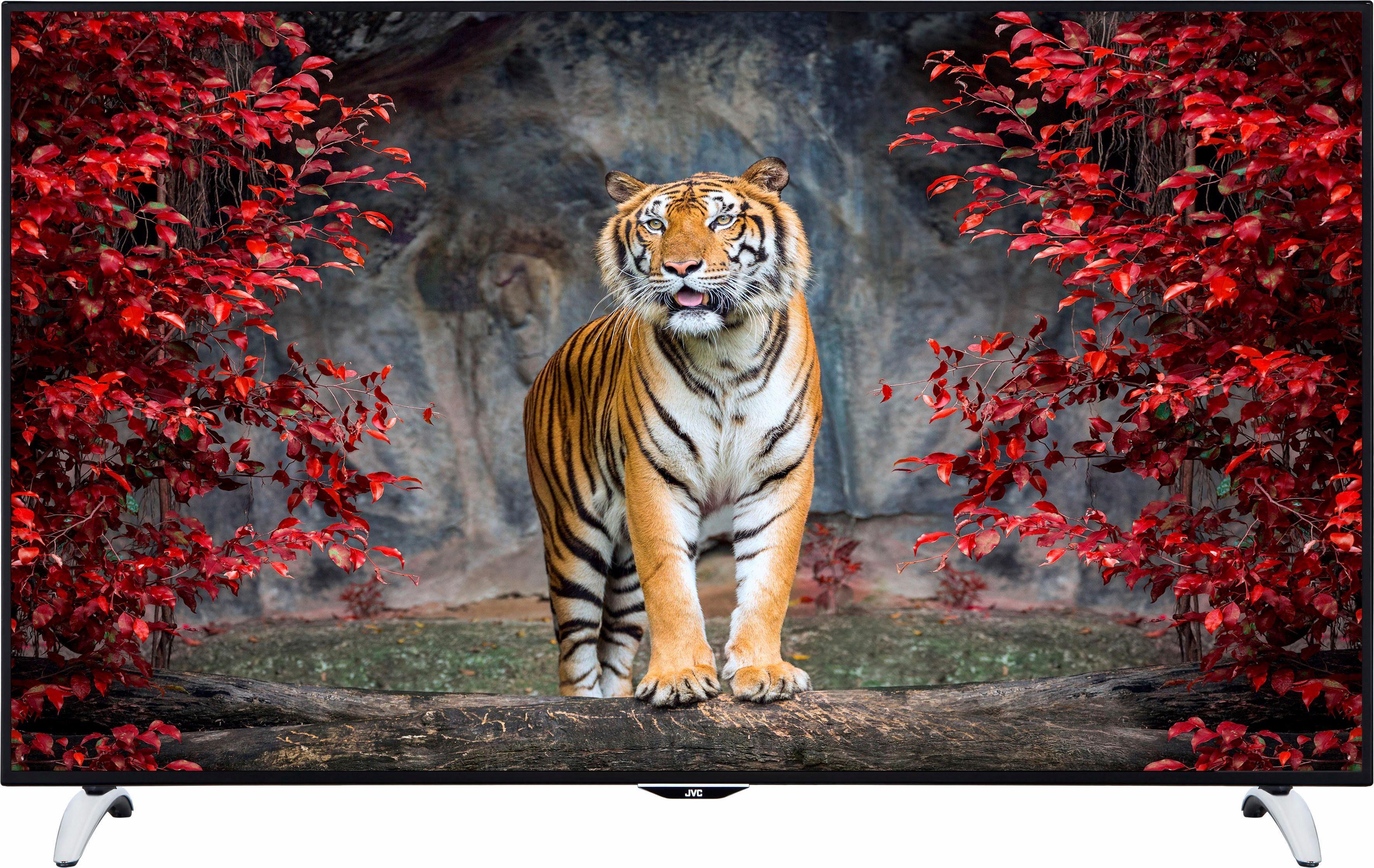JVC LT-65V73AU, LED Fernseher, 165 cm (65 Zoll), 2160p (4K Ultra HD), Smart-TV