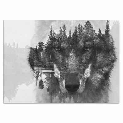 Home affaire Acrylglasbild »Wolf«, 60/40 cm