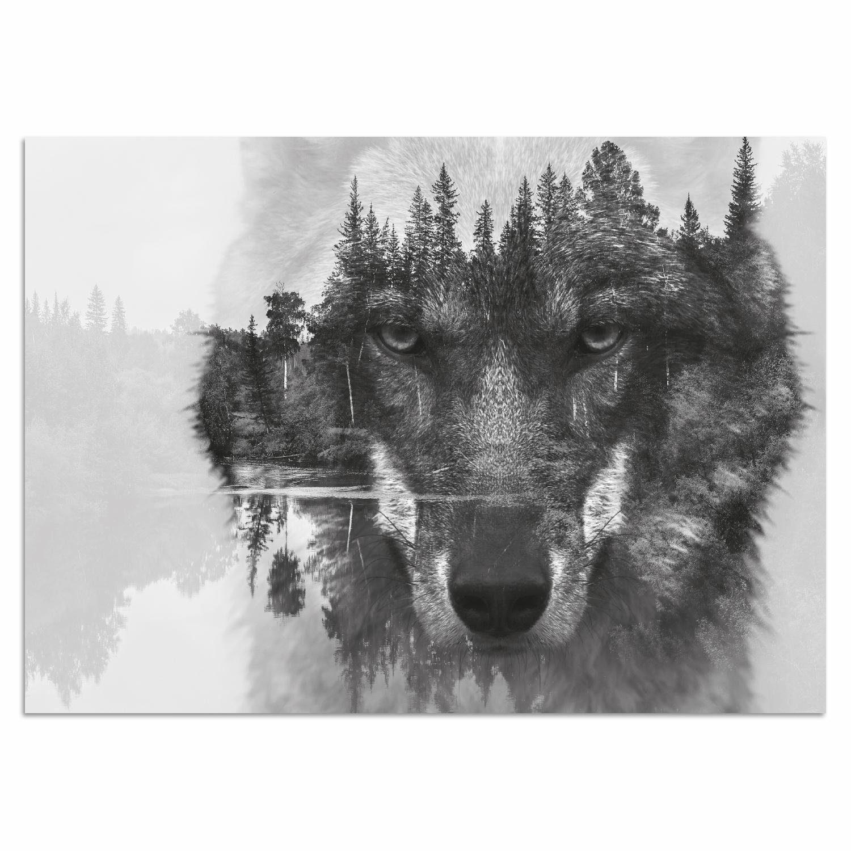 Home affaire, Acrylglasbild, »Wolf«, 60/40 cm