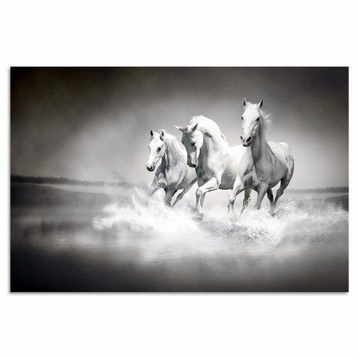 Home affaire Acrylglasbild »Pferde«, 60/40 cm