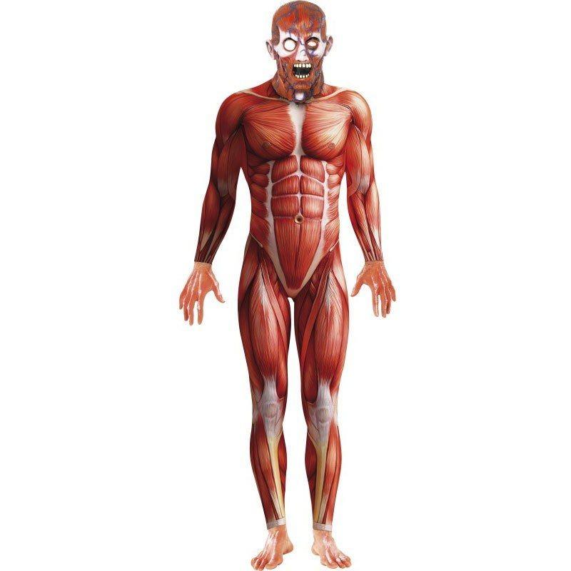 Anatomie Mann Bodysuit online kaufen | OTTO