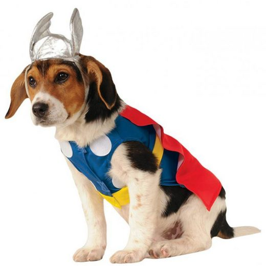 Thor Hundekostüm