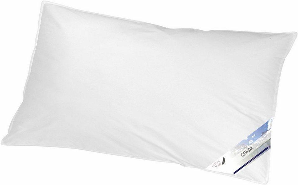 Federkissen Canada Kbt Bettwaren Fullung 85 Federn 15 Daunen 1 Tlg Online Kaufen Otto