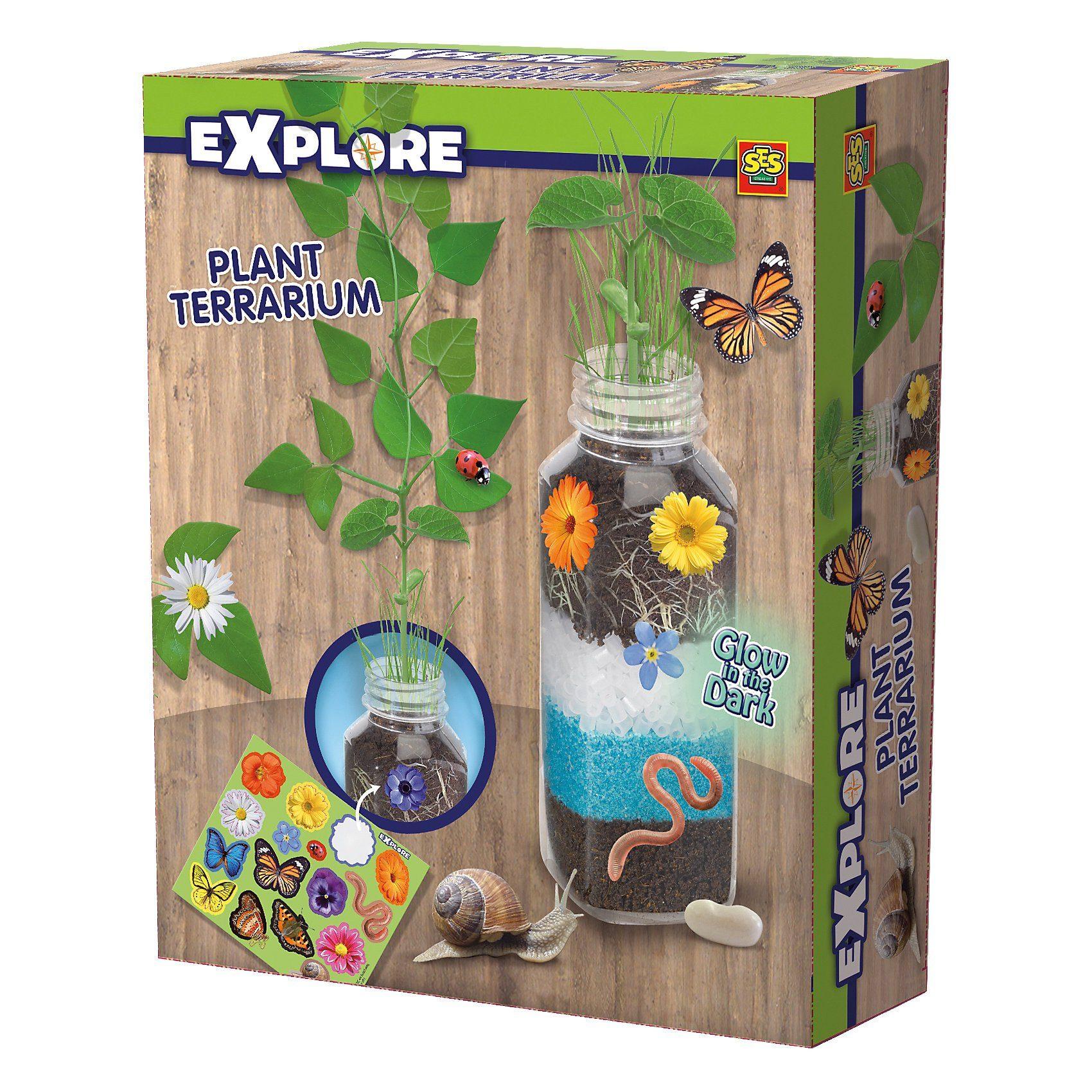 SES Creative Pflanzen im Terrarium