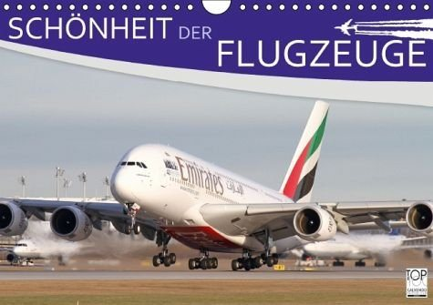 Kalender »Schönheit der Flugzeuge (Wandkalender 2017 DIN...«