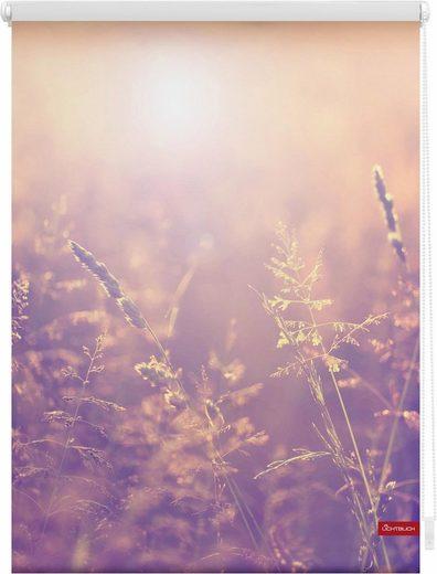 Seitenzugrollo »Klemmfix Motiv Sommerabend«, LICHTBLICK, Lichtschutz, ohne Bohren, freihängend, bedruckt