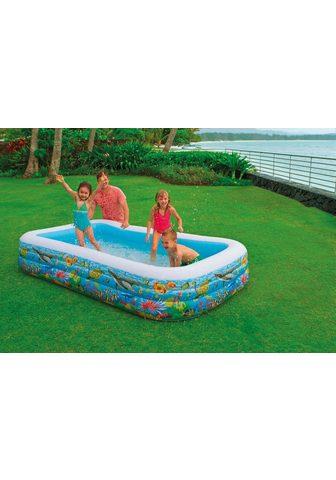INTEX Baseinas »Swim Center Tropical Reef Fa...