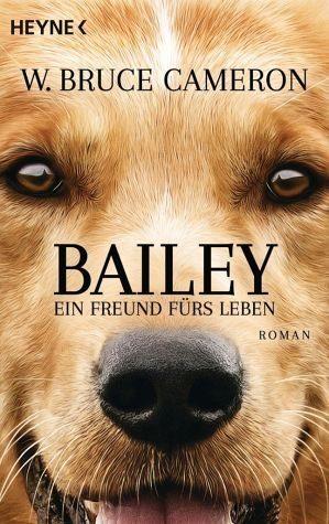 Broschiertes Buch »Bailey - Ein Freund fürs Leben«