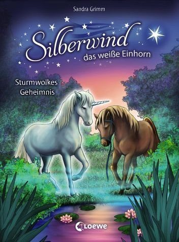 Gebundenes Buch »Sturmwolkes Geheimnis / Silberwind, das weiße...«