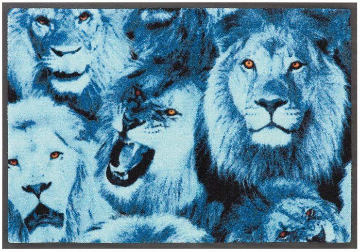 Teppich »Lions«, Bruno Banani, rechteckig, Höhe 9 mm