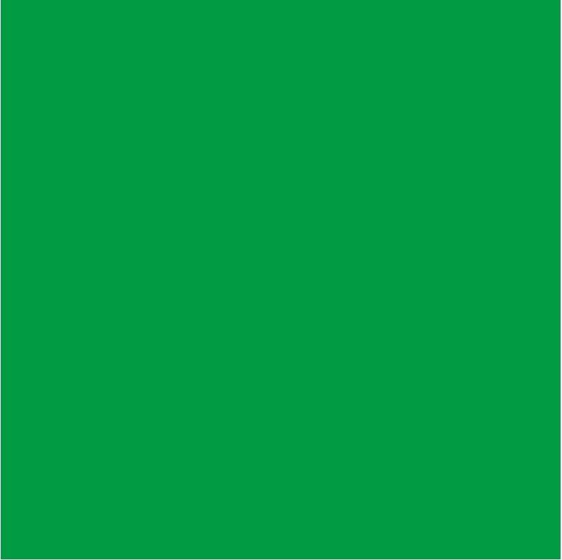BRESSER Hintergrund »Papierhintergrundrolle 2,72x25m chromakey grün«