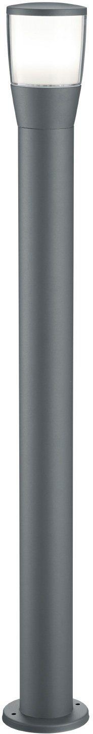 TRIO Leuchten LED Außen-Stehlampe »SHANNON«, 1-flammig, Wegeleuchte