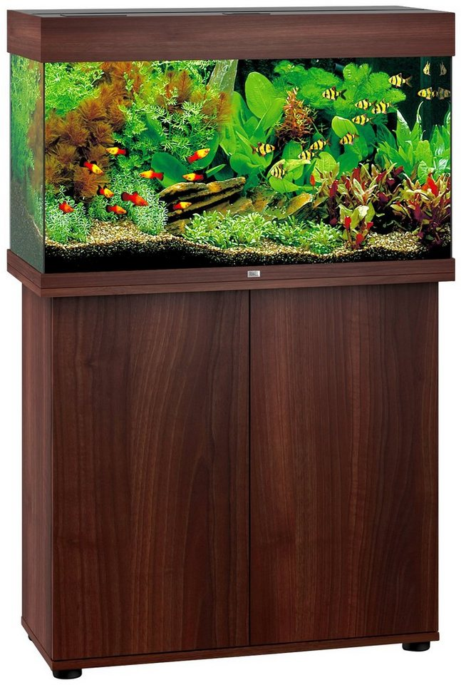 juwel aquarien aquarien set rio 125 led bxtxh 81x36x123 cm 125 l online kaufen otto. Black Bedroom Furniture Sets. Home Design Ideas
