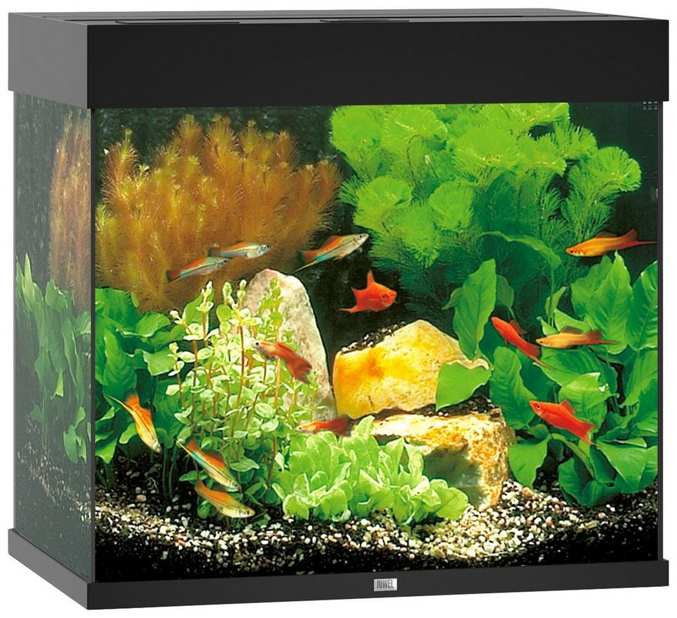 juwel aquarien aquarium lido 120 led b t h 61 41 58 cm 120 l in 4 farben online kaufen otto. Black Bedroom Furniture Sets. Home Design Ideas