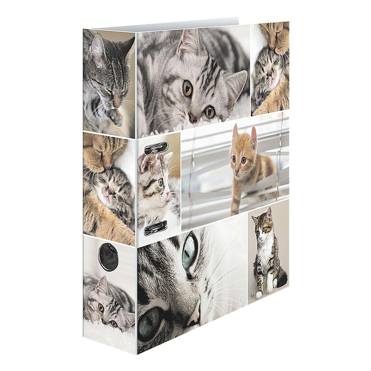 Herma Motivordner »Katzen«