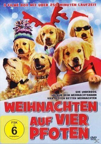 DVD »Weihnachten auf vier Pfoten«