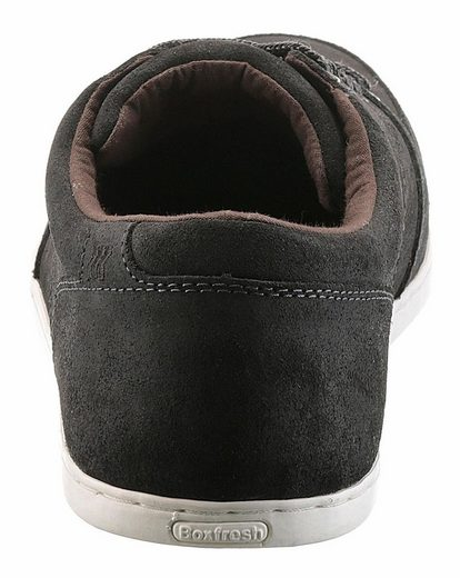 Boxfresh Spencer Sneaker, With Padded Collar