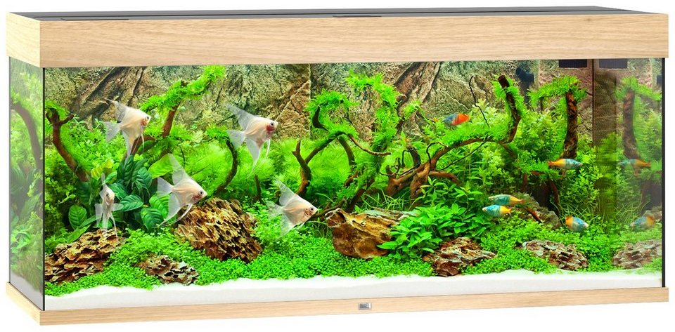 juwel aquarien aquarium rio 240 led b t h 121 41 55 cm 240 l in 4 farben online kaufen otto. Black Bedroom Furniture Sets. Home Design Ideas