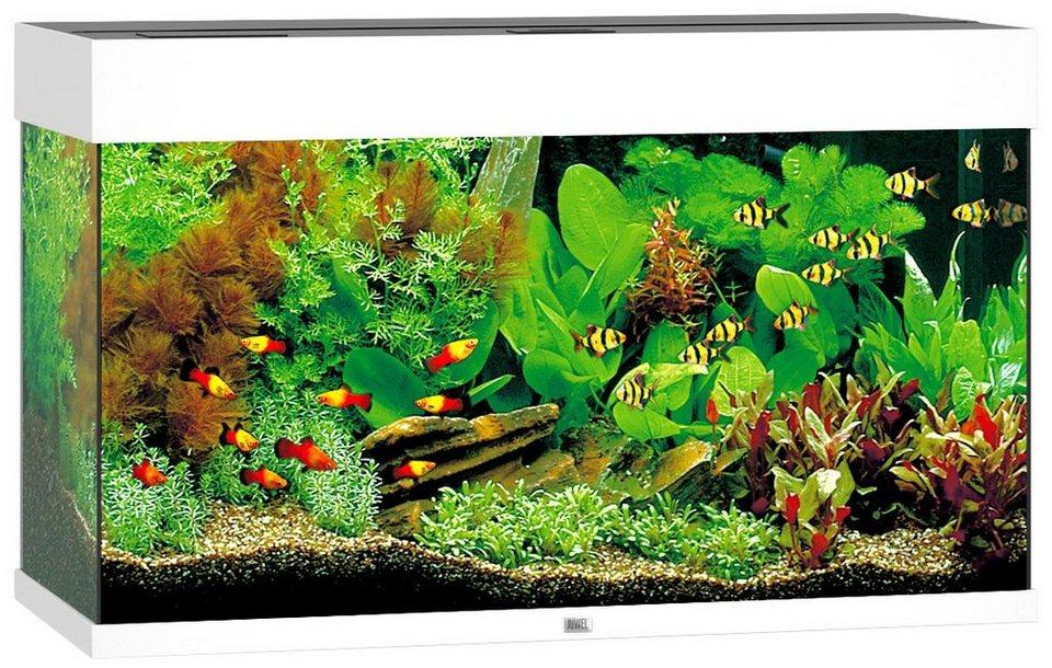 juwel aquarien aquarium rio 125 led b t h 81 36 50 cm 125 l in 4 farben online kaufen otto. Black Bedroom Furniture Sets. Home Design Ideas