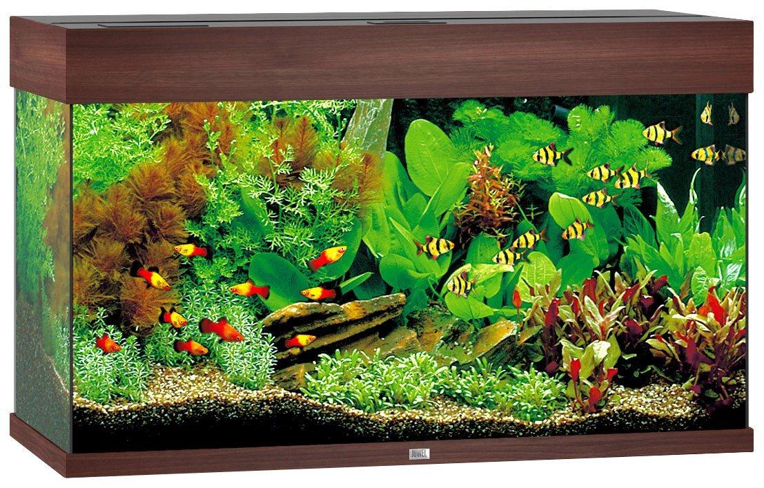 Aquarium »Rio 125 LED«, B/T/H: 81/36/50 cm, 125 l, in 4 Farben