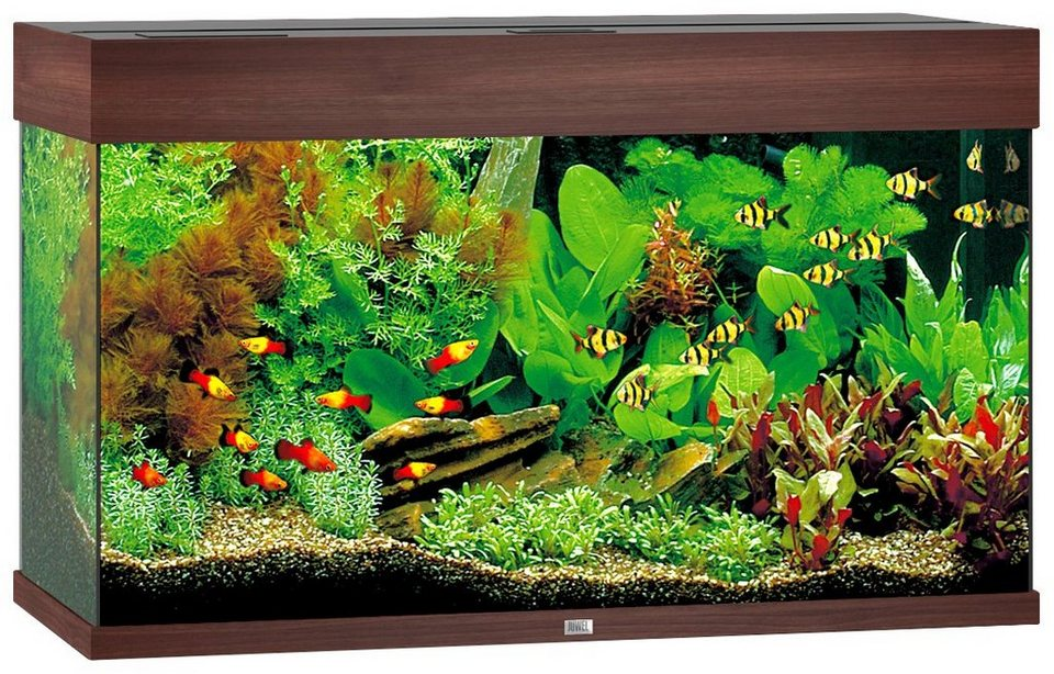 juwel aquarien aquarium rio 125 led b t h 81 36 50 cm 125 l in 4 farben online kaufen otto. Black Bedroom Furniture Sets. Home Design Ideas